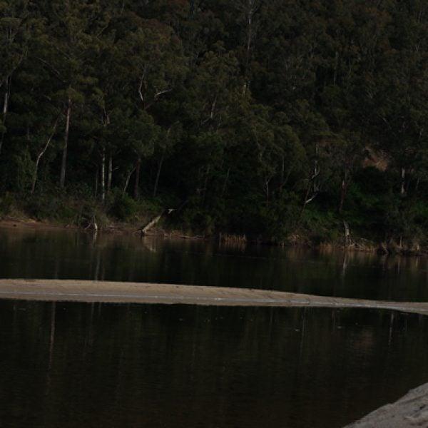 Greer Taylor, 'not-doing … sensing', at the river, 2021